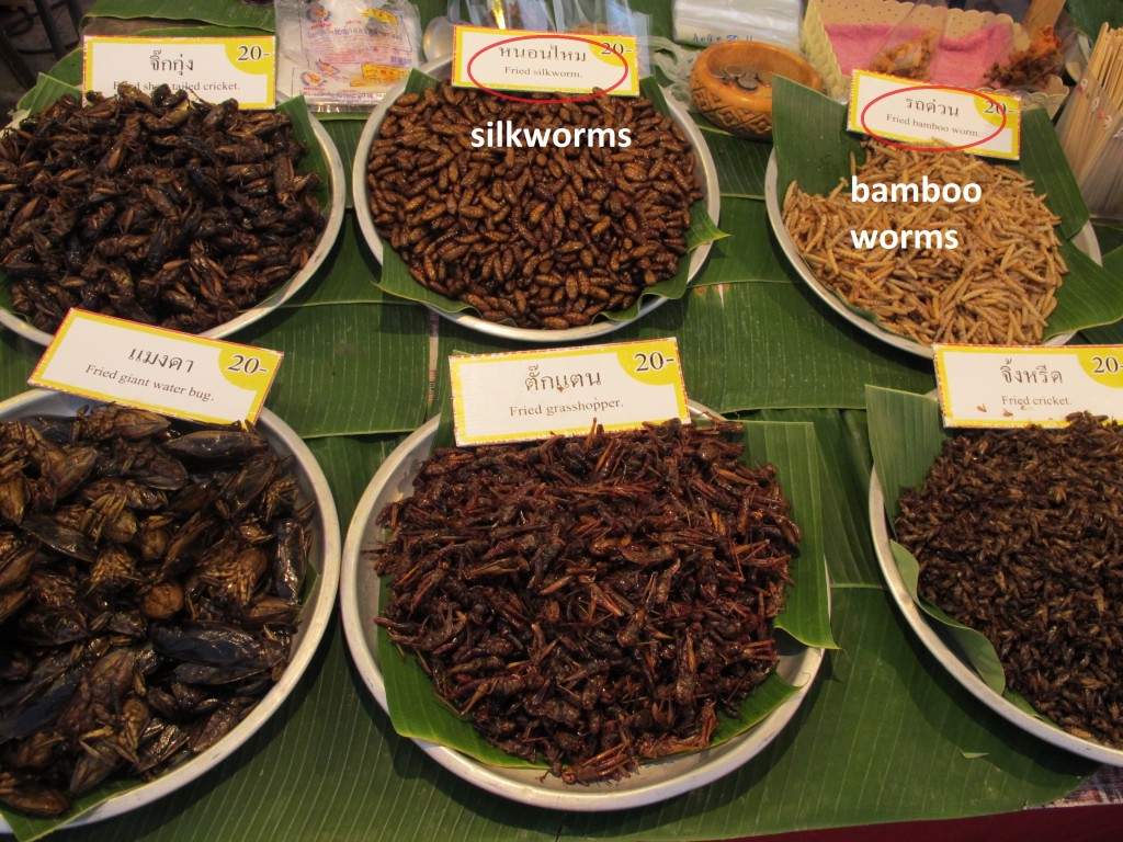 silkworms taste like salty sticks and bamboo worms taste like worms (Espen)